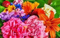 Wciąż życie różnorodni kwiaty zdjęcie stock