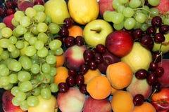 Wciąż życie rozmaitość owoc i jagody Obraz Stock