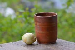 Wciąż życie, Stara gliniana waza i cebula, Obrazy Royalty Free