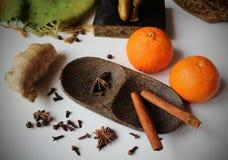 Wciąż życie układaliśmy na drewnianym pucharze imbir, cloves, gwiazdowy aniseed, czarny pieprz i cynamon, - tangerines i pikantno Obrazy Royalty Free