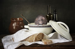 Wciąż życie w starym stylu z dekoracyjnym szczurem i przedmiotami kuchnia Zdjęcia Stock
