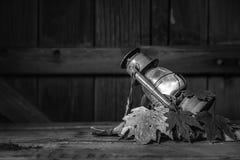 Wciąż życie wizerunek Czerwony lampion i liście - 2 Zdjęcie Royalty Free