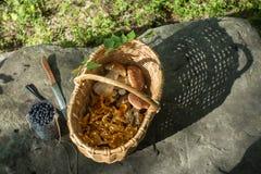 Wciąż życie z łozinowym koszem z chanterelles i porcini pieczarkami, słój z czarnymi jagodami na ampuła kamieniu w lesie Zdjęcie Royalty Free