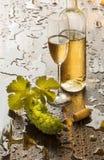 Wciąż życie z białym winem Fotografia Royalty Free