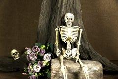 Wciąż życie z czaszką, historia miłosna set, ciemny pojęcie Fotografia Stock