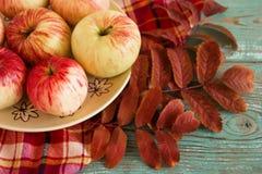 Wciąż życie z czerwonymi, żółtymi jabłkami na talerzu z suchymi pomarańczowymi liśćmi i Obrazy Stock