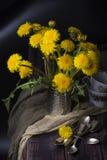 Wciąż życie z dandelions Fotografia Stock