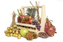 Wciąż życie z jesieni owoc obraz stock
