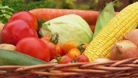 Wciąż życie z kukurudzą, pomidorami, grulami i cebulami w koszu, zbiory