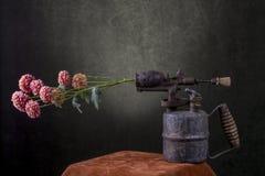 Wciąż życie z kwiat gałąź i starym blowtorch zdjęcie royalty free