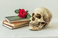 Wciąż życie z ludzką czaszką z sfałszowane czerwone róże i książki Zdjęcie Royalty Free