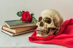 Wciąż życie z ludzką czaszką z sfałszowane czerwone róże i książki Fotografia Royalty Free