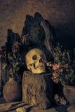 Wciąż życie z ludzką czaszką z pustynnymi roślinami, kaktus, róże Fotografia Stock