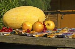 Wciąż życie z melonem, jabłkami, czerwonymi rodzynkami i malinkami, obrazy stock