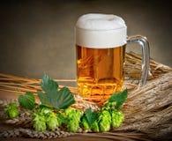 Wciąż życie z piwem i podskakuje zdjęcie royalty free