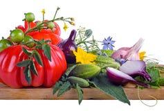 Wciąż Życie z surowymi warzywami odizolowywającymi na w Zdjęcia Stock