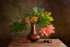 wciąż jesień życie zdjęcia stock