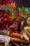 wciąż jesień życie zdjęcie royalty free