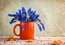 Wciąż kwitnie błękit życie bukieta wiosna Zdjęcia Royalty Free
