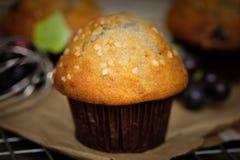 Wciąż projektują życie czarnej jagody muffins w wieśniaku Fotografia Stock