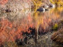 Wciąż woda w jesieni Fotografia Stock