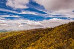 Wcześni wiosna kolory żółci, zielenie w Shenandoah parku narodowym i Zdjęcie Royalty Free