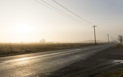 wcześnie rano mgła Zdjęcie Royalty Free