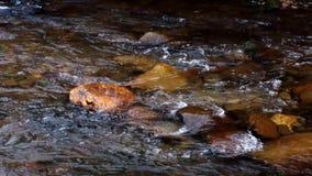 wcześniej robił halnemu jesieni zdjęcie biegunowemu strumieniowi góry zbiory wideo