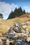 wcześniej robił halnemu jesieni zdjęcie biegunowemu strumieniowi góry Fotografia Royalty Free