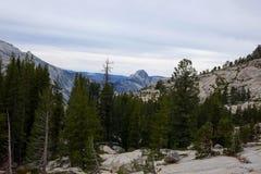 wczesna California wiosna n p Yosemite P - Kalifornia zdjęcie royalty free
