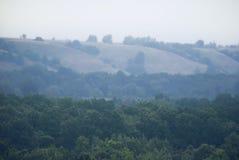 Wczesna mgła nad floodplain rzeka, przerastający z pierwszym planem fotografia stock