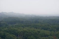Wczesna mgła nad floodplain rzeka, przerastający z pierwszym planem zdjęcia royalty free