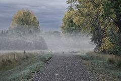 Wczesna Październik mgła Desaturated fotografia royalty free