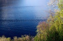 wczesna wiosna lake Fotografia Royalty Free