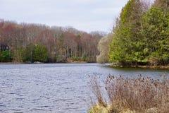Wczesna wiosna przy jeziorem Zdjęcia Royalty Free