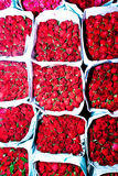 wczesnego kwiatu rynku ranek oświadczone róże Fotografia Stock