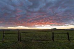 Wczesnego poranku światło i brama Obrazy Stock