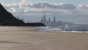 Wczesnego poranku psi odprowadzenie przy Północną końcówką palm beach, złota wybrzeże, Queensland Australia zdjęcie wideo