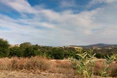 Wczesnego poranku słońca światło na południowego Kalifornia wzgórzach w jesieni, Zdjęcie Royalty Free