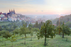 Wczesnego poranku widok Praga z złotym wschodem słońca Obraz Stock