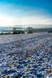 Wczesnego poranku widok przez śnieg zakrywającego przeorał pole odlegli mgliści wzgórza w Cotswolds, Gloucestershire, UK obrazy royalty free