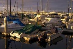 Wczesnego Wieczór Żaglówki Jachtu Oceanu Schronienia Marina Obrazy Royalty Free
