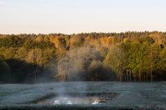 Wczesnej jesieni zimny ranek na łące z hoarfrost na trawie fotografia stock