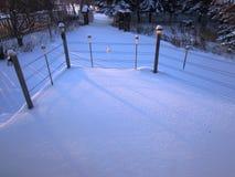 Wczesnej zimy łosia amerykańskiego śnieżna nakrywkowa szczęka Zdjęcie Royalty Free