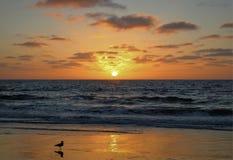 Wczesny jesień zmierzch przy Torrance stanu plażą, Los Angeles okręg administracyjny, Kalifornia obraz stock