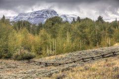 Wczesny jesieni Wyoming krajobraz, osiki obraz royalty free