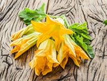wczesny kwiatów ranek wiosna zucchini Fotografia Royalty Free