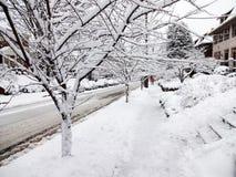 Wczesny Marcowy śnieżyca w mieście Zdjęcie Royalty Free
