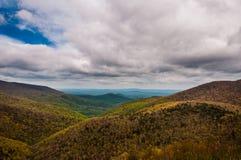 Wczesny Podgórski i, w Shenandoah parku narodowym, Virginia. Obraz Royalty Free