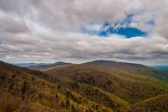 Wczesny Podgórski i, w Shenandoah parku narodowym, Virginia. Obraz Stock